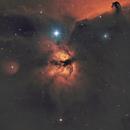 NGC 2024 Flame Nebula - SHO,                                Richard H