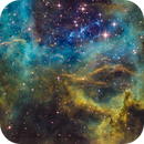 Rosette Nebula,                                DaveMoulton
