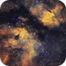 IC1318 Butterfly Nebula,                                HekelsSkywatch
