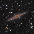NGC 891 LRGB,                                Craig