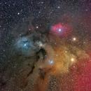 Rho Ophiuchi Cloud Complex - Deep Sky West,                                Deep Sky West (Lloyd)