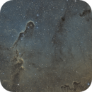 IC1396 SHO,                                Vincelet Yannick