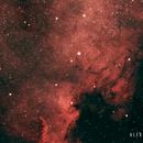 NGC 7000 - Nebulosa de Norte América,                                Alex Cortés Martinez