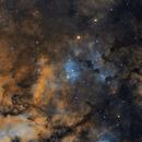 NGC 6910 and neighborhood,                                Rodd Dryfoos