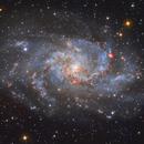 M33,                                Andrea Maggi