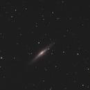 NGC2683,                                Michael P.