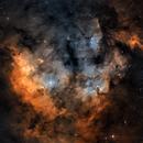 NGC7822 BiColor Version,                                Sascha Schueller