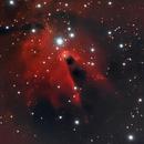 nebulosa cono   ngc2264,                                Marcello Pilia
