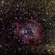 Rosetta Nebula,                                Paolo Manicardi