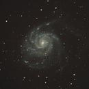 M101 Galassia Girandola,                                Roberto Polo