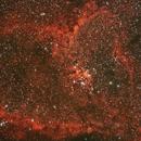 IC 1805: The Heart Nebula,                                Glenn Diekmann