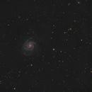 M101 quickie,                                Frank Schmitz