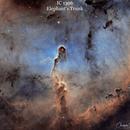 The Elephant's Trunk Nebula,                                Chris Troiani