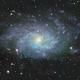 M33 The Triangulum Galaxy,                                Peter Webster