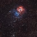 Trifid Nebula (M20),                                Dan Gallo