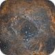 NGC 2244,                                Stefan Muckenhuber