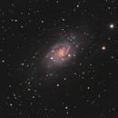 NGC 2403,                                pedxing