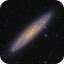 NGC253,                                Rodney Watters
