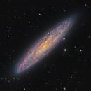 NGC253,                                Rodney Watters