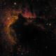 Sh 2-155 Cave Nebula Close Up HSO,                                Glenn C Newell