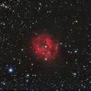 IC5146  Cocoon Nebula in Cygnus,                                Francois Theriault