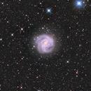 Messier 83 - Southern Pinwheel,                                Miroslav Horvat