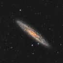 NGC 253,                                Giorgio Baj