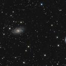 NGC 2336,                                Brice