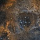 NGC 2244 Bi Color,                                John Leader