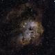 IC410 Tadpoles,                                midnight_lightning
