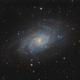 First light - Triangulum Galaxy with D810a,                                Michael S.