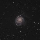 M101 - Pinwheel Galaxy,                                corpusjonsey