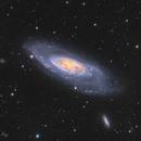 M106-galaxie spirale,                                astromat89