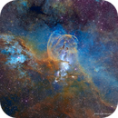 The Statue of Liberty Nebula - with Torch- NGC3576,                                Eric Coles (coles44)