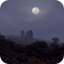 Moonset 98.4%,                                David