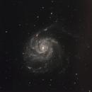 "M101 with Rental 24"" CDK,                                Doug Lalla"
