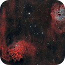 IC 405 & IC410 - The Flaming Star and the Tadpoles,                                Michel Makhlouta