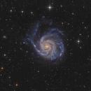 M101 - Pinwheel Galaxy,                                Bernhard Zimmermann