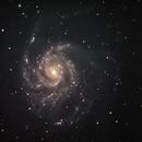 M101,                                Ken Yoshimura