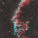 NGC 6995 East Veil,                                Dan Vranic