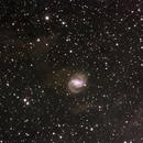 NGC6952,                                Timgilliland