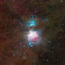 M42 and Its Surroundings,                                Wei-Hao Wang