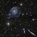 NGC 2805,                                Frank Colosimo