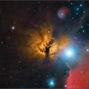 The Flame Nebula, NGC 2024  (Close Field),                                Randal Healey