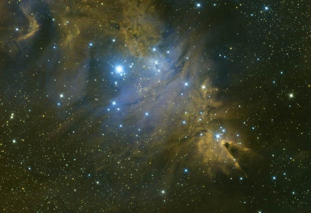 Fox Fur Nebula/Cone Nebula Medium Field in HSO Blend,                                mikefulb