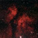 IC1318 Butterfly Nebula,                                Jaroslaw Przybyla