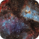 NGC 3372 - Nebulosa Eta Carinae,                                Irineu Felippe de Abreu Filho