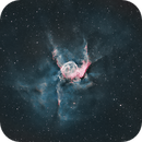 NGC2359 , SH2-298, Thor's Helmet,                                Anne-Maree McComb