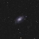 NGC 2403,                                Josef Büchsenmeister
