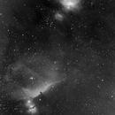 Widefield M42 & IC434,                                normcatalunya
